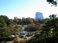 六義園で秋さんぽ