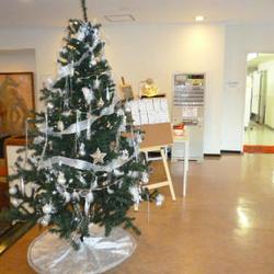 KITAZONO Christmas coming soon!